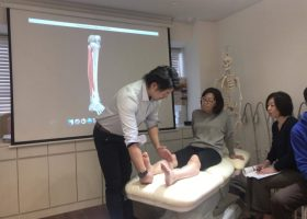 写真:理学療法士による徒手療法