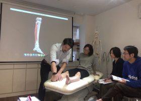 写真:下肢の解剖を理解