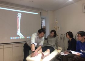 写真:関節の種類による動きの理解